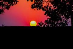 Sun bounty full photo Royalty Free Stock Image