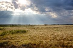 Sun breaks through clouds over the steppes Stock Image