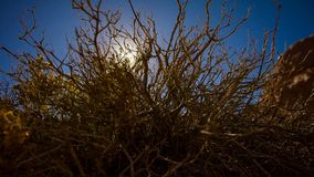 Sun bricht über der Wüste, während es über einen Berg steigt stockfotografie