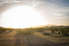 Sunrise in Desert stock images