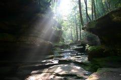 Sun brilla a través Foto de archivo libre de regalías