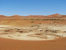 Sun burnt land in Deadvlei Royalty Free Stock Photo