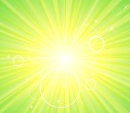 Sun burst green background Stock Images
