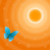 Sun and butterfly. Orange sun and blue butterfly, background illustration Stock Images