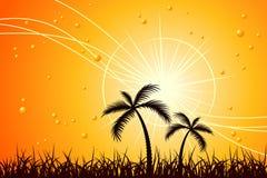 Sun caldo Fotografie Stock