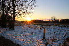 The sun casts a reddish glow in the snow. In November Royalty Free Stock Images