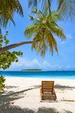 Sun chair under palm tree on tropical beach royalty free stock photography