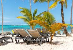 Sun chairs on the beach among palm trees royalty free stock photography