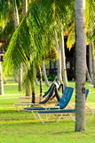 Sun chairs and Palm tree Royalty Free Stock Photography