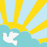 The sun, cloud and the pigeon Stock Images
