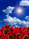 Sun  cloud sky Royalty Free Stock Image