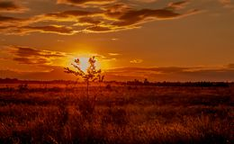 The sun through the clouds in the steppe. Royalty Free Stock Images