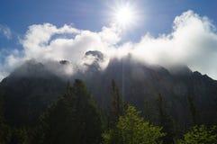 Trail in the forest. Tatransky narodny park. Vysoke Tatry. Slovakia.The sun in the clouds. Tatransky narodny park. Vysoke Tatry. S stock images