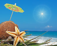 Sun and coconuts. Coconuts with small umbrellas under a shining sun Royalty Free Stock Image