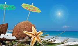 Sun and coconuts. Coconuts with small umbrellas under a shining sun Stock Photos
