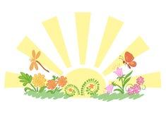 Sun com flora e fauna - ilustração Fotos de Stock