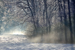 The sun is coming out in Winter. The morning sun is coming out while still the mist is covering the wintery landscape Royalty Free Stock Photography