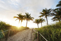 Sun Coming Up in Miami Stock Images