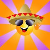 Sun con il sombrero Fotografia Stock