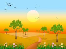 Sun Countryside Shows Green Grass And Environment Royalty Free Stock Images