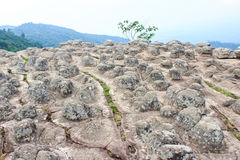 Sun Crack rocks at Phu Hin Rongkla national park, Phitsanulok, T Royalty Free Stock Photo
