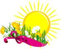 Sun daisies banner Stock Photos