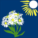 Sun and daisies. Bouquet of daisies in the bright sun in cartoon style Stock Photos