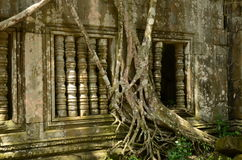 Sun dappled window at Beng Mealea Stock Images