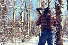 Sun day man with axe in the forest Stock Images