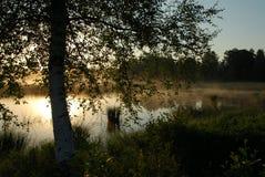 Sun de medianoche II Fotografía de archivo