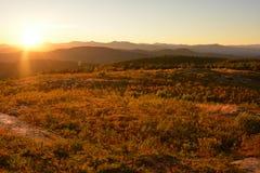 Sun 8 della montagna - dorato Fotografia Stock