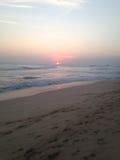 Sun dello Sri Lanka Fotografie Stock