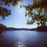 Sun, der über See durch Bäume nachdenkt Lizenzfreies Stockfoto