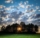 Sun, der durch Bäume bei Sonnenuntergang scheint Drastischer bewölkter Himmel Grüne Landschaft Stockfotografie