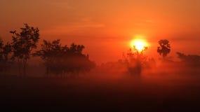 The Sun in der Landschaft Stockbild