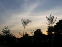 Sun dessous image libre de droits