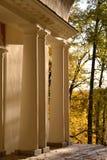 Sun, detalhe arquitetónico, autorização, árvores, luz fotos de stock royalty free