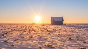 Sun di pieno inverno Fotografie Stock Libere da Diritti