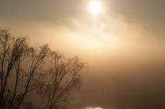 Sun di primo mattino Fotografia Stock