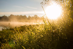 Sun  disk rises over the foggy river Royalty Free Stock Images