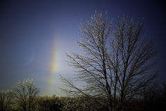 Sun Dog with Deep Blue Sky. A sun dog on a cold winter day. The sun dog looks like a rainbow. in the foreground are ice covered trees Royalty Free Stock Photos