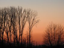 Sun down Dendermonde. Sun down sunset taken in Belgium Sint Maria Oudenhove, nature picture of trees in sun down, artisanale, country side Stock Image