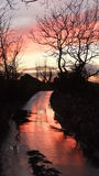 Sun down the lane. Pink sunset reflections Royalty Free Stock Photos
