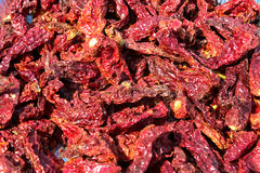 Sun dried chili. Sun dried Red chilies, used for Indian masalas & gravy Royalty Free Stock Image