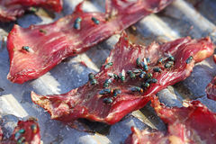 Sun-dried pork with flies Royalty Free Stock Image