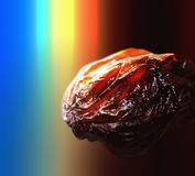 Sun dried raisin  in a colorful rainbow background Royalty Free Stock Image