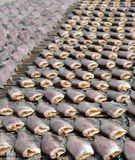 Sun dried salid fish before cooking sell in the market in thaila Stock Image