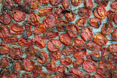 Sun Dried Tomato Stock Image