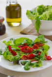 Sun-dried tomato with arugula salad Stock Photography