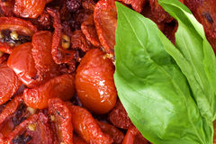 dried tomatoes and basil. A close-up  of home dried tomatoes with basil leaves Stock Photos